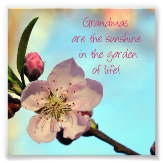 "Pink Blossom ""Grandmas are..."" Photo Print Gift"