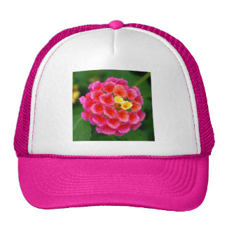 Pink Blossom with Stowaways Trucker Hats