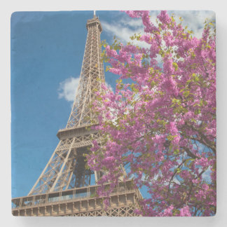 Pink Blossoming Tree Below The Eiffel Tower Stone Coaster