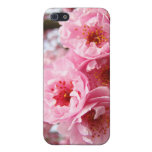 Pink Blossoms Administrative Assistant iPhone case iPhone 5/5S Cases