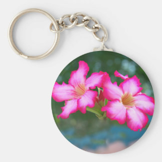 Pink blossoms basic round button key ring