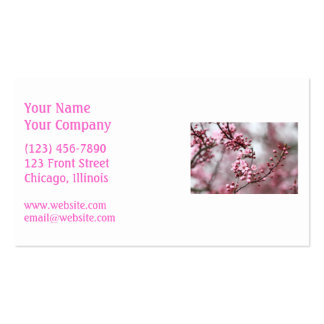 Pink Blossoms in Spring Photo Business Cards