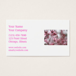 Pink Blossoms in Spring Photo Business Card