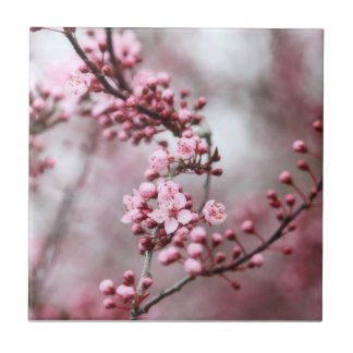 Pink Blossoms in Spring Photo Small Square Tile