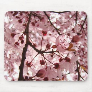 PINK BLOSSOMS MOUSEPADS Tree Blossoms Mousepad