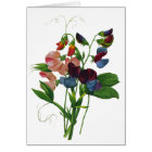 Pink Blue and Purple Sweet Peas by Redoute Card