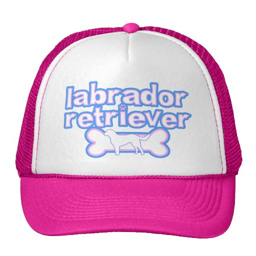 Pink & Blue Labrador Retriever Hat