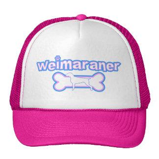 Pink & Blue Weimaraner Hat