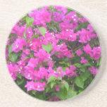 Pink Bougainvillea Coaster