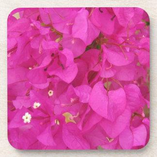 Pink Bougainvillea Flower (Greece) Coaster