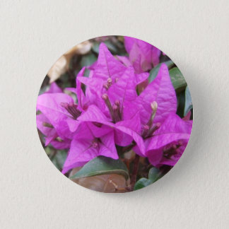 Pink Bougainvillea Flowers Button