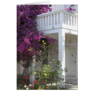 Pink Bougainvillea growing outside a house, GREECE Card