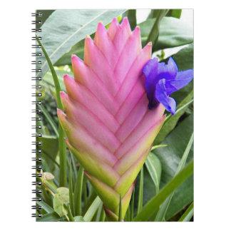 Pink Bromeliad Floral Notebook