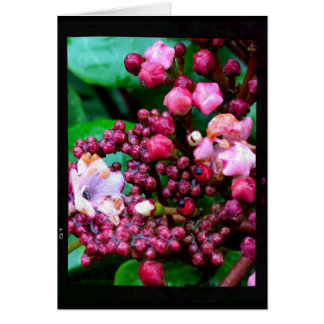 Pink Buds on Green Leaves Blank Card