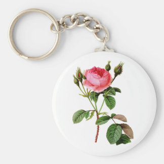 Pink Cabbage Rose by Pierre Joseph Redoute Key Chains