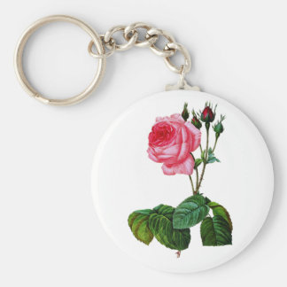 Pink Cabbage Rose By Pierre Joseph Redoute Key Chain