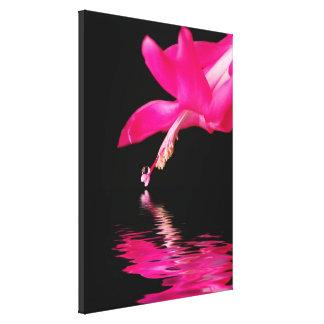 Pink Cactus Bloom Gallery Wrap Canvas