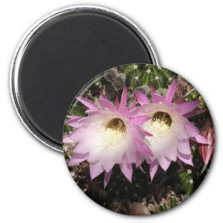 Pink Cactus Flower Magnet