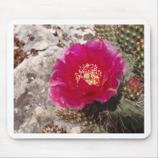 Pink Cactus Flower Mouse Pads