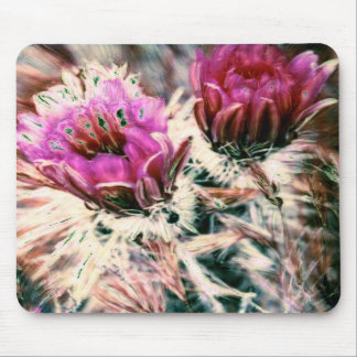 Pink Cactus Flowers Mousepad