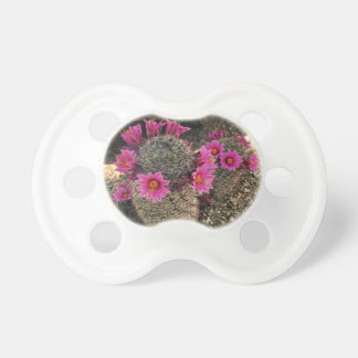 Pink Cactus in Bloom Baby Pacifiers