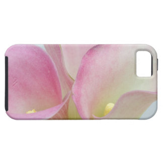 Pink Calla Lilies iPhone 5 Case