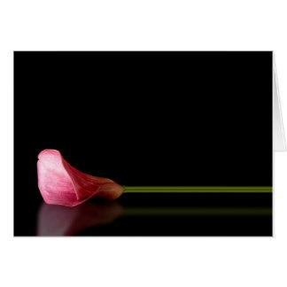 Pink Calla Lily Reflection Greeting Card