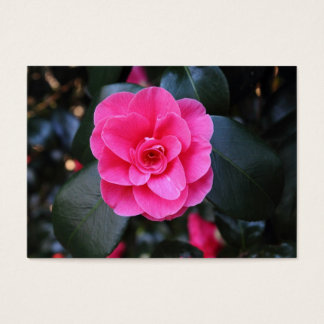 Pink Camellia Business Card