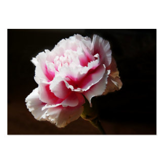 Pink Carnation Artcard ACEO Pack Of Chubby Business Cards