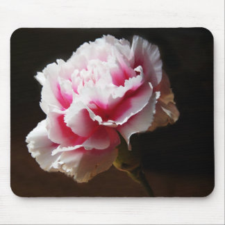Pink Carnation Dianthus Flower Mouse Pad