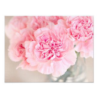 Pink Carnations Art Photo