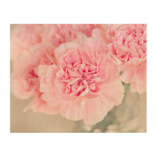 Pink Carnations Wood Canvas