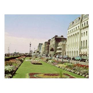 Pink Carpet gardens on promenade at Eastbourne, Su Postcard