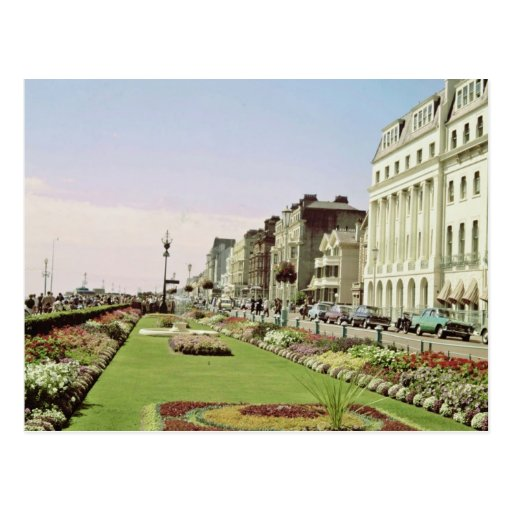 Pink Carpet gardens on promenade at Eastbourne, Su Post Cards