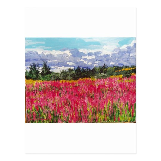 Pink Carpet Painting Postcard