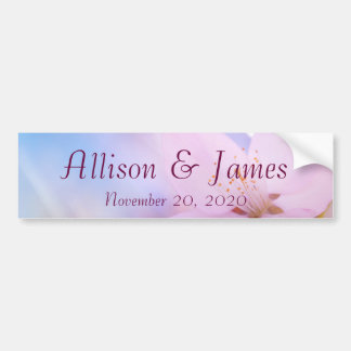 Pink cherry blossom bumper sticker