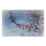 Pink Cherry Blossom Flowering Tree  Poster