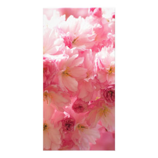 Pink Cherry Blossom Photo Card Template