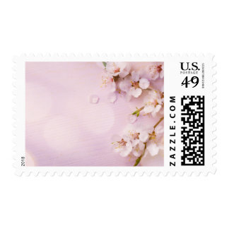 Pink Cherry Blossom Postage Stamps