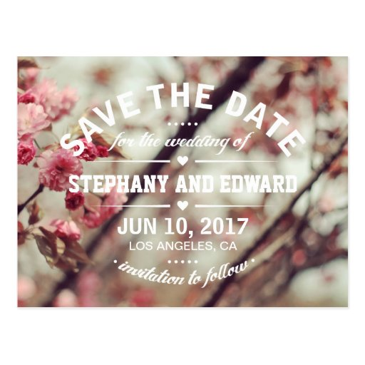 Pink Cherry Blossom Save the Date Postcard Wording