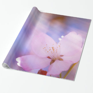 Pink cherry blossom wrapping paper