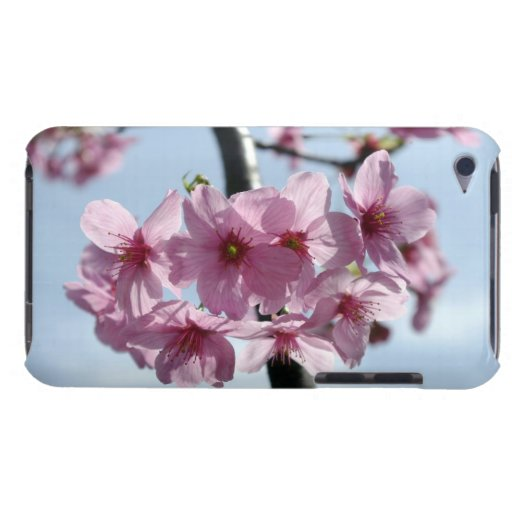 Pink cherry blossoms and light-blue sky iPod touch covers