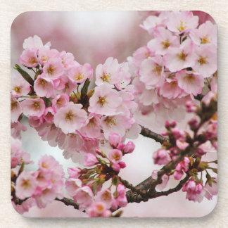 Pink Cherry Blossoms Coaster Set