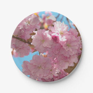 Pink Cherry Blossoms Floral 7 Inch Paper Plate