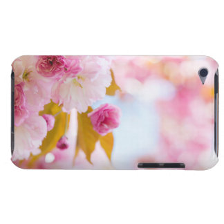 Pink cherry blossoms in spring orchard iPod touch covers