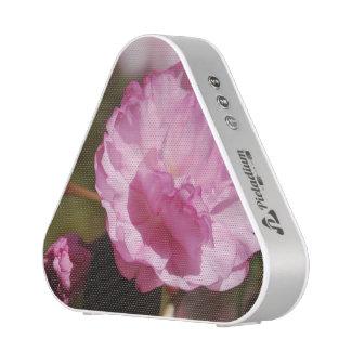 Pink Cherry Blossoms Speaker
