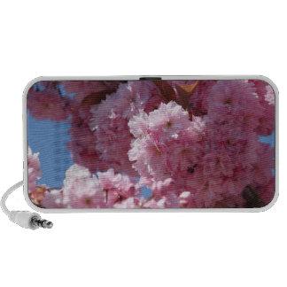 Pink Cherry Blossoms Mp3 Speaker