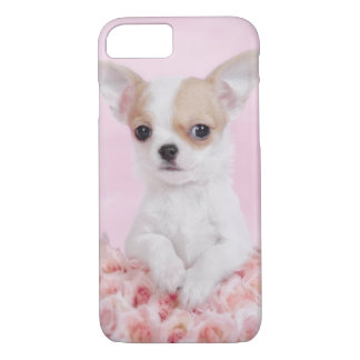 Pink Chihuahua puppy iPhone 7 case