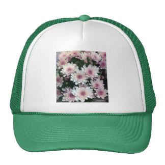 Pink Chrisanthemums Cap
