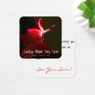 Pink Christmas Cacti Flower Photograph Square Business Card